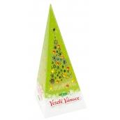 Vánoční balení černého čaje, jablko a skořice proti vysokém u tlaku, obezitě, infarktu, nachlezení, rakovině, infarktu 20 x 2 g