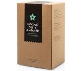 Aromatica Močové cesty a měchýř bylinný čaj 20 x 2 g