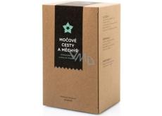 Aromatica Močové cesty a mechúr bylinný čaj 20 x 2 g