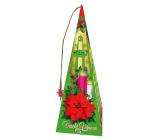 Liran Vianočné balenie Med a škorica zelené čaje s príchuťou 18 x 2 g