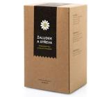 Aromatica Žalúdok a črevá bylinný čaj 20 x 2 g