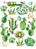 Nekupto Darčeková papierová taška 18 x 23 x 10 cm Kaktusy 1882 50 ÚFM