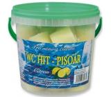 Wc Hit Citron do pisoár s vůní 30 kusů 600 g