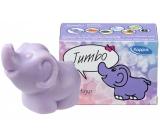 Kappus Slon toaletné mydlo v krabičke pre deti 90 g