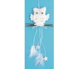 Sova biela na zavesenie, hviezdičky 22 cm