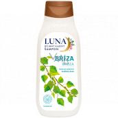 Alpa Luna Breza bylinný šampón na vlasy, obmedzuje nadmerné mastenie vlasov 430 ml