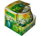 Admit Easter Green dekoratívne aromatická sviečka v skle 80 g