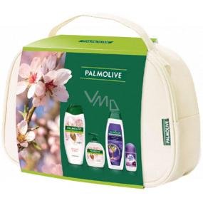 Palmolive Naturals Milk & Almond sprchový krém 500 ml + Milk & Almond tekuté mydlo 300 ml + Softly Liss šampón na vlasy 350 ml + Lady Speed Stick Fresh & Essence antiperspirant roll-on 50 ml, kozmetická sada