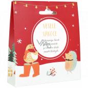 Albi Čaj v krabičke vianočné Veselé Vianoce ovocný