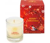 English Soap Merry Christmas - Veselé Vianoce sójová vonná sviečka 170 ml, horí až 35 hodín