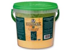 Drutep Rochova soľ PI 1 kg vedro
