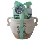 Salsa Collection Marakuja a Grep sprchový gél 90 ml + telové mlieko 90 ml + ruže do kúpeľa 3 x 3 g, kozmetická sada v keramickom kvetináči