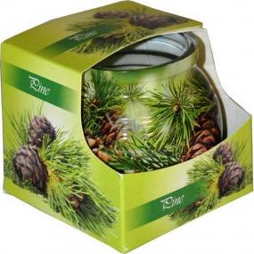 Admit Pine dekorativní aromatická svíčka ve skle 80 g