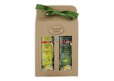 Bohemia Gifts & Cosmetics Olivový olej, hroznový olej a extrakt z citrusov olejový sprchový gél 250 ml + olejový šampón na vlasy 250 ml, kozmetická sada