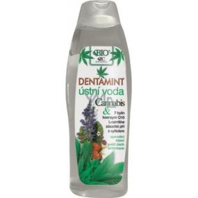 Bione Cosmetics Dentamint Cannabis ústní voda 500 ml