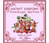 Le Blanc Fruits Rouges - Červené ovoce Vonný sáček 11 x 11 cm 8 g