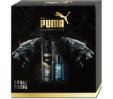 Puma kaz.Shake the Night edt 50ml + deo spr.150ml 4564