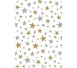 Ditipo Darčekový baliaci papier 70 x 500 cm Biely zlaté a strieborné hviezdičky