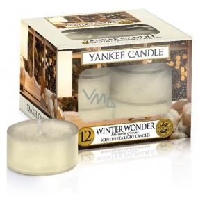 Yankee Candle Winter Wonder - Zimný zázrak vonná čajová sviečka 9,8 g 12 kusov