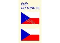Arch Tetovacie obtlačky na tvár i telo Slovenská vlajka 3 motív