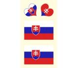Arch Tetovací obtisky na obličej i tělo Slovenská vlajka 3 motiv