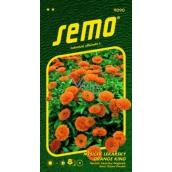 Semo Nechtík lekársky Orange King oranžový 1 g