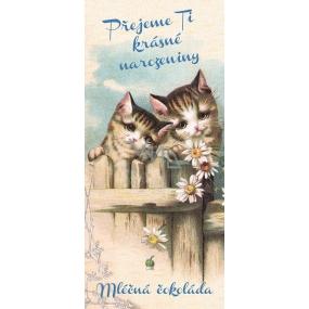 Bohemia Gifts & Cosmetics Mléčná čokoláda Přejeme Ti krásné narozeniny kočky, dárková 100 g