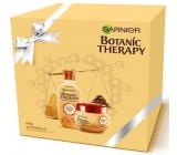 Garnier Botanic Therapy Honey & Propolis šampón pre veľmi poškodené vlasy 250 ml + Botanic Therapy Honey & Propolis maska pre veľmi poškodené vlasy 300 ml, kozmetická sada