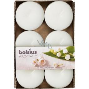 Bolsius Aromatic Maxi Lily of the Valley - Konvalinka vonné čajové sviečky 6 kusov, doba horenia 8 hodín