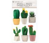 Samolepky na stenu plastické 3D kaktusy 29 x 49 cm