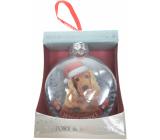 Albi Sklenená vianočné ozdôbky so zvieratkami - Anglický kokeršpaniel 7,5 cm x 8 cm x 3,6 cm