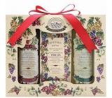 Bohemia Gifts & Cosmetics Wine Spa Vinná kosmetika sprchový gel 100 ml + Toaletní mýdlo 100 g + Vlasový šampon 100 ml
