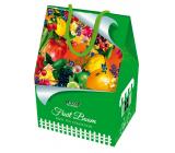 Liran Vianočné balenie ovocných čajov mix domček 6 x 3 x 2 g