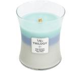 WoodWick Trilogy Woven Comforts - Hřejivé pohodlí vonná svíčka s dřevěným knotem a víčkem sklo střední 275 g