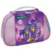 Palmolive Relax sprchový gel 250 ml + pěna do koupele 500 ml + lady speed stick 45 g + šampon na vlasy 350 ml, kosmetická sada