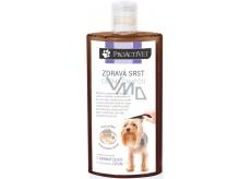 Proactivet Zdravá srst derma šampon pro výživu, zklidnění podrážděné kůže a jemnou pěči o srst i u nejnáročnějších psů 250 ml