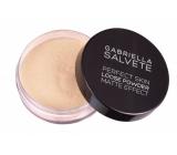 Gabriella salva Loose Powder sypký zmatňujúci púder 01 6,5 g