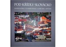 Pod krídlami Slovácko Kučera, Těthal, Mikl, Pajer fotokniha