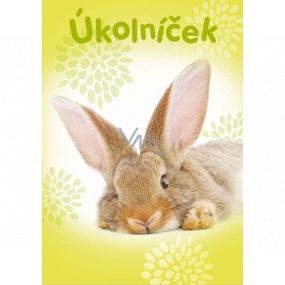 Ditipo Úkolníček ležiace králik zošit A6