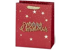 BSB Luxusná darčeková papierová taška 23 x 19 x 9 cm Vianočný s 3D nápisom Merry Christmas VDT 004-A5