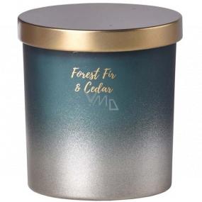 Emóciám Forest Fir & Cedar - Jedľa a céder vonná sviečka sklo s plechovým viečkom 80 x 90 mm