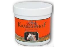 Kräuterhof Konský balzam hrejivý tlmiaci prostriedok na bolesť kĺbov a chrbtice 250 ml