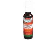 Dr. Popov Kúzelné vianoce osviežovač vzduchu rozprašovač 50 ml