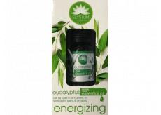 Elysium Spa Eucalyptus 100% esenciálny olej 10 ml
