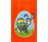 Nekupto Veľkonočný sáčok zajačik 180 x 360 mm 006 30 NVE