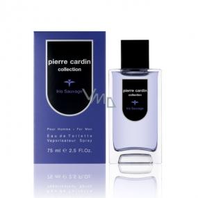 Pierre Cardin Iris Sauvage toaletná voda pre mužov 75 ml