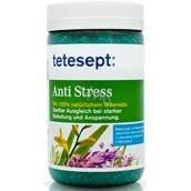 Tetesept Protistresová Levandule a Meduňka 100% Mořská sůl 900 g Anti Stress
