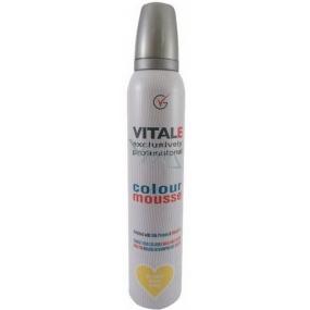 Vitale Exclusively Professional farbiace penové tužidlo s vitamínom E Blonde - Blond 200 ml