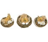 Sliepočka v hniezde hnedá 6,5 cm 1 kus