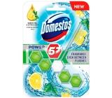 Domestos Power 5 Green Tea & Citrus WC tuhý blok 55 g